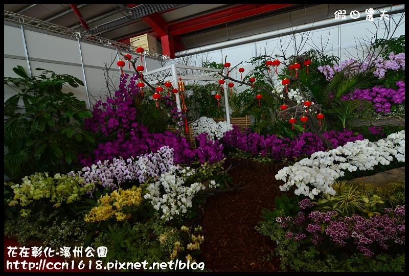 花在彰化-溪州公園DSC_3168
