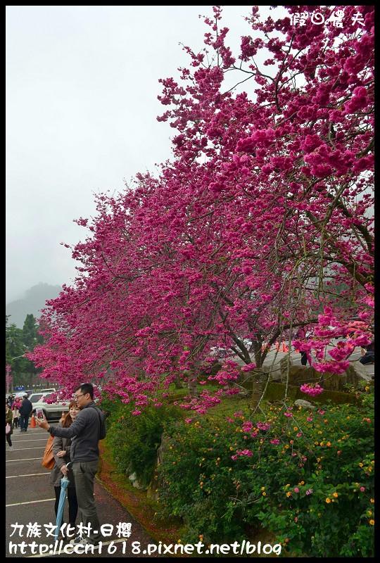 九族文化村-日櫻DSC_4426