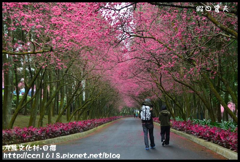 九族文化村-日櫻DSC_4439