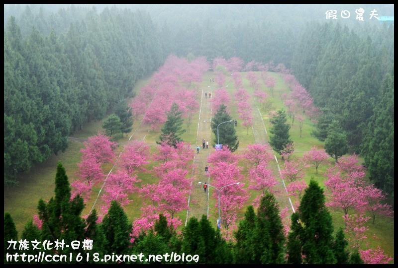 九族文化村-日櫻DSC_4509