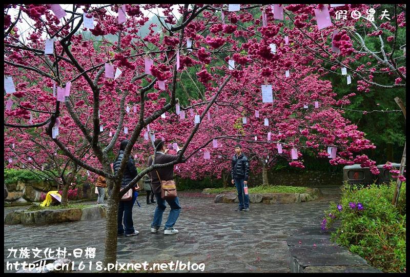 九族文化村-日櫻DSC_4550