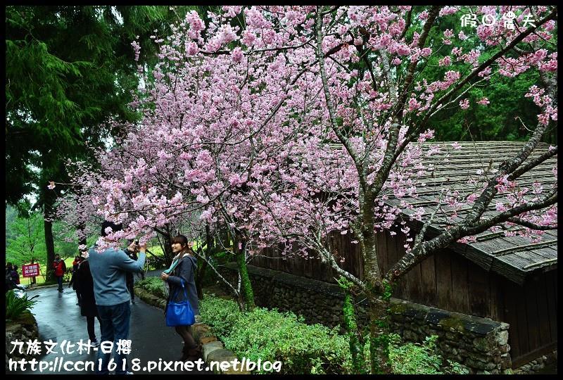 九族文化村-日櫻DSC_4704