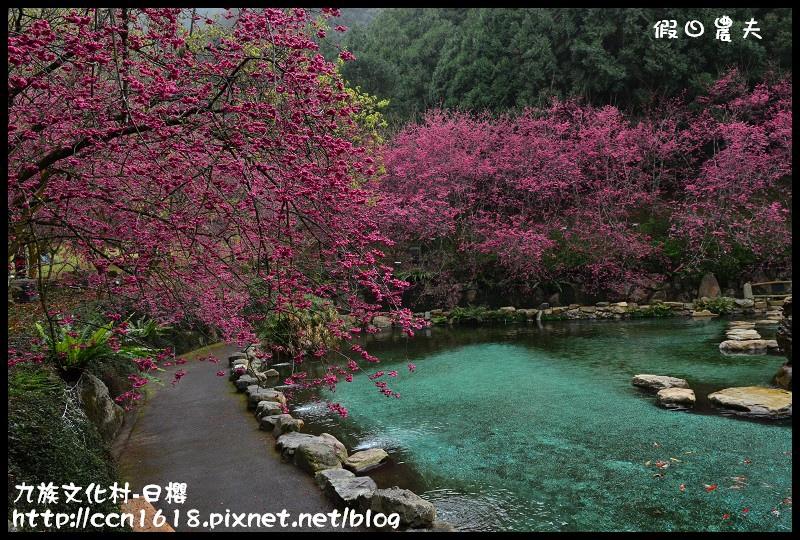 九族文化村-日櫻DSC_4740