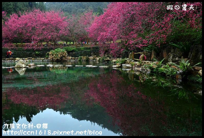 九族文化村-日櫻DSC_4747