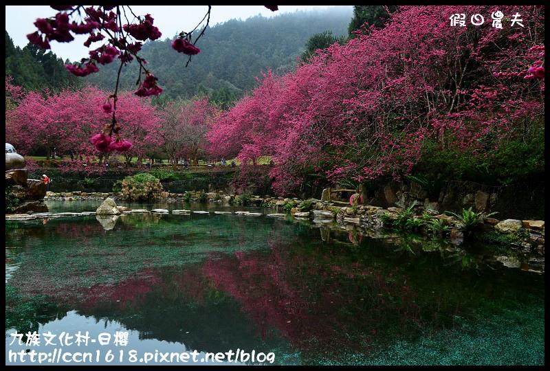 九族文化村-日櫻DSC_4749