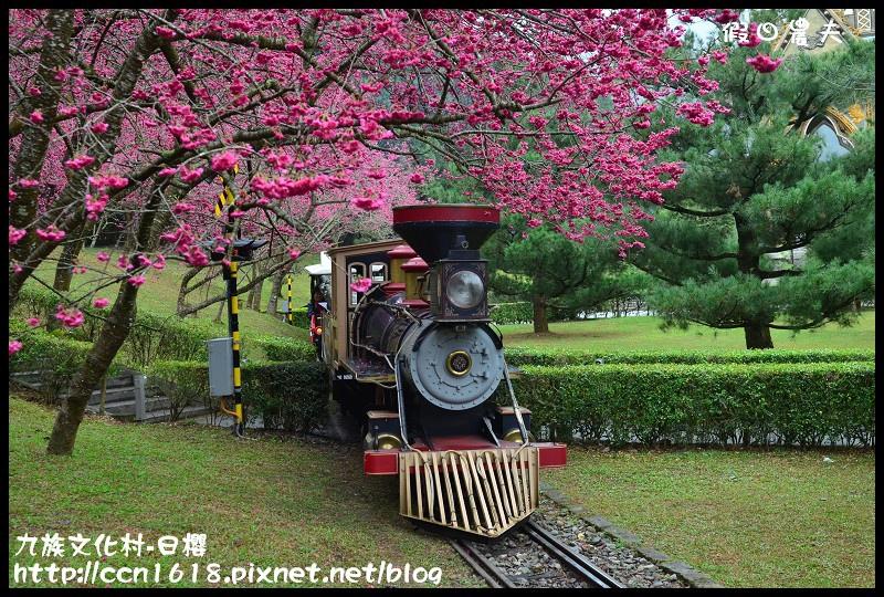 九族文化村-日櫻DSC_4759