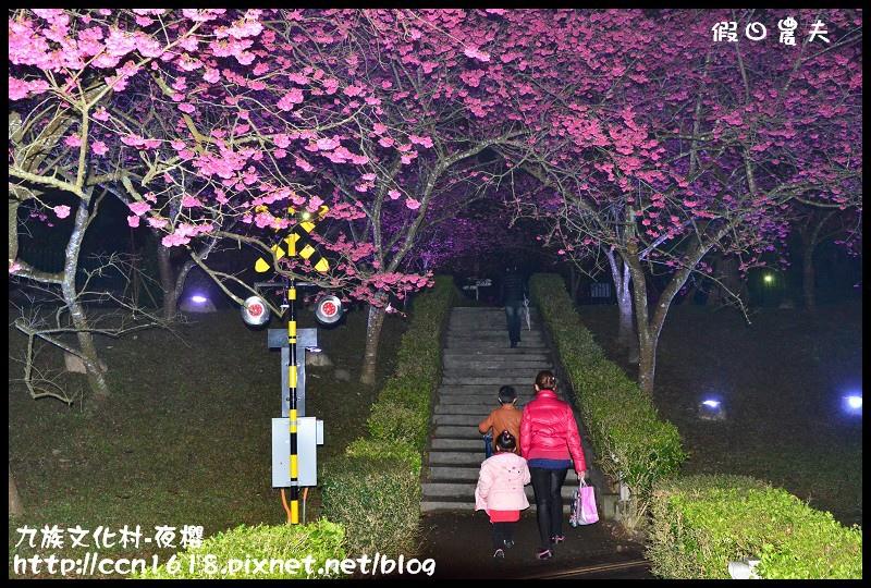 九族文化村-夜櫻DSC_5071