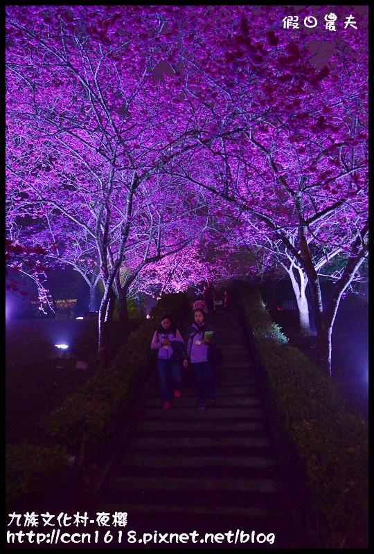 九族文化村-夜櫻DSC_5074