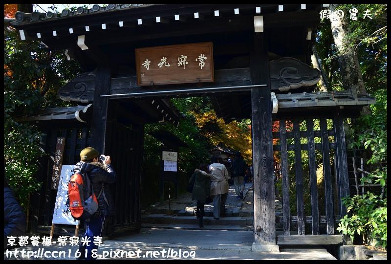 京都賞楓-常寂光寺DSC_4265