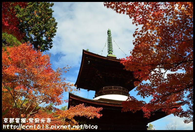 京都賞楓-常寂光寺DSC_4413