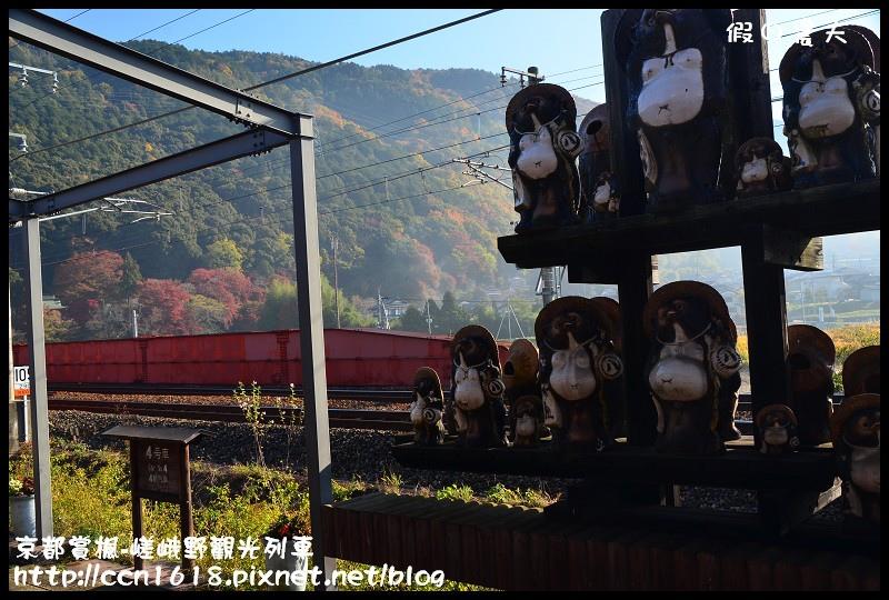 京都賞楓-嵯峨野觀光列車DSC_3820