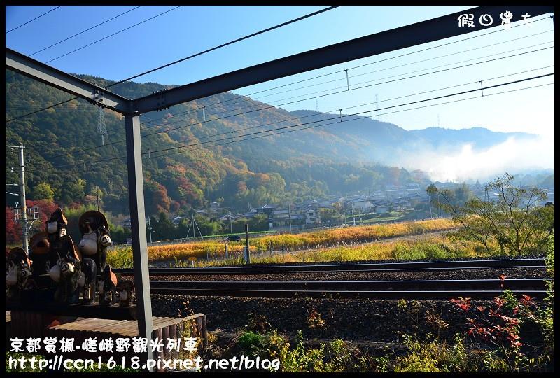 京都賞楓-嵯峨野觀光列車DSC_3830