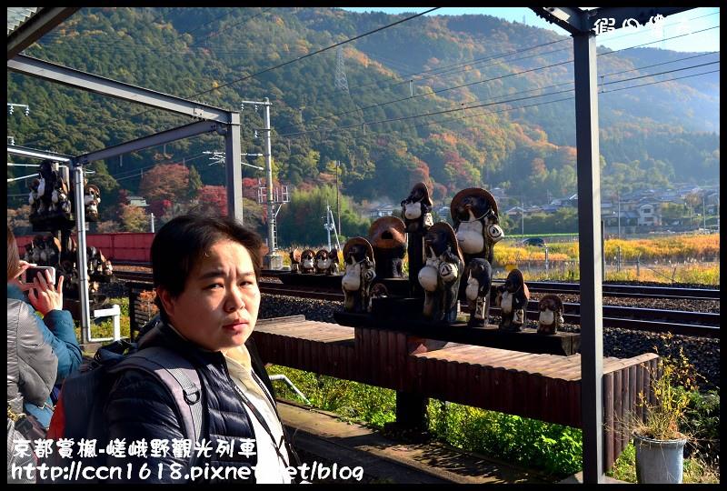 京都賞楓-嵯峨野觀光列車DSC_3832