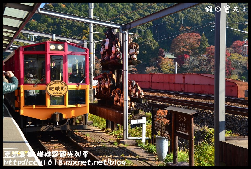 京都賞楓-嵯峨野觀光列車DSC_3838