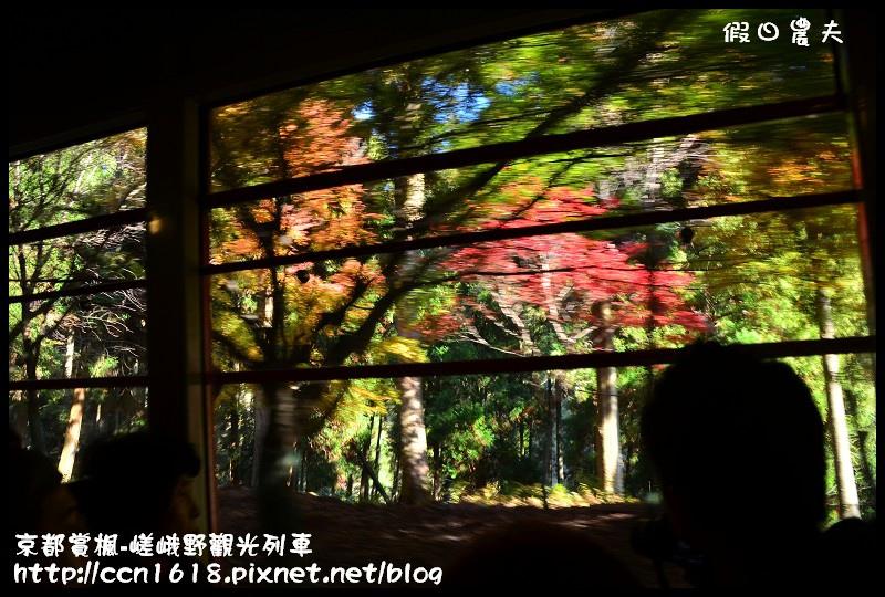 京都賞楓-嵯峨野觀光列車DSC_3858