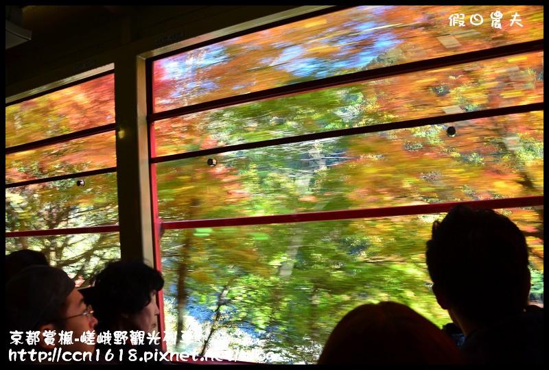 京都賞楓-嵯峨野觀光列車DSC_3860