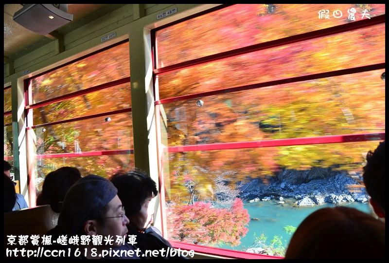 京都賞楓-嵯峨野觀光列車DSC_3867