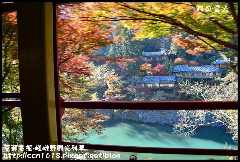 京都賞楓-嵯峨野觀光列車DSC_4190