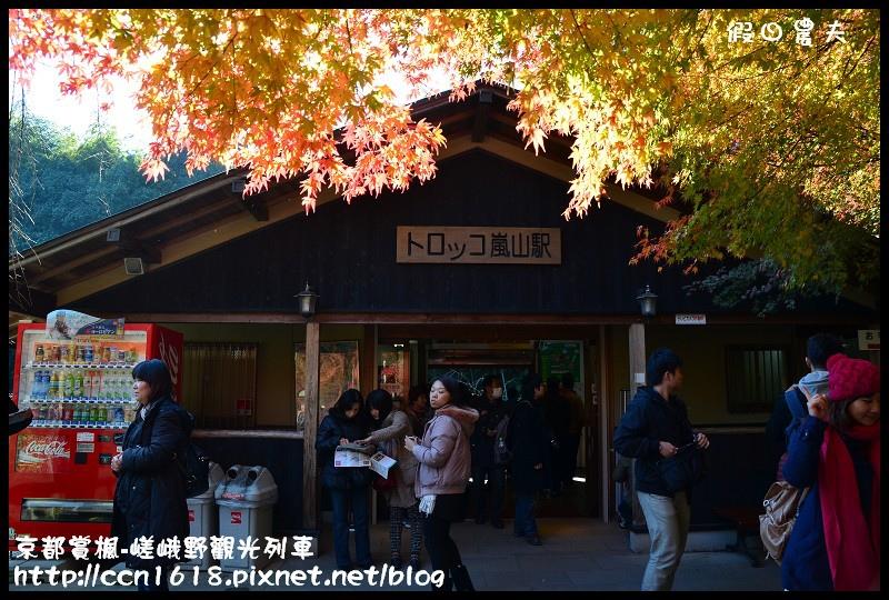 京都賞楓-嵯峨野觀光列車DSC_4225