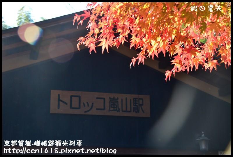 京都賞楓-嵯峨野觀光列車DSC_4223