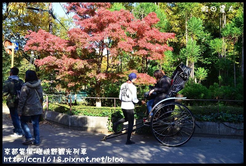 京都賞楓-嵯峨野觀光列車DSC_4235