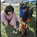 蜻蜓雅茿庭園民宿DSC_1430