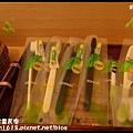 蜻蜓雅茿庭園民宿DSC_2690
