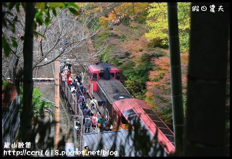 嵐山散策DSC_4484