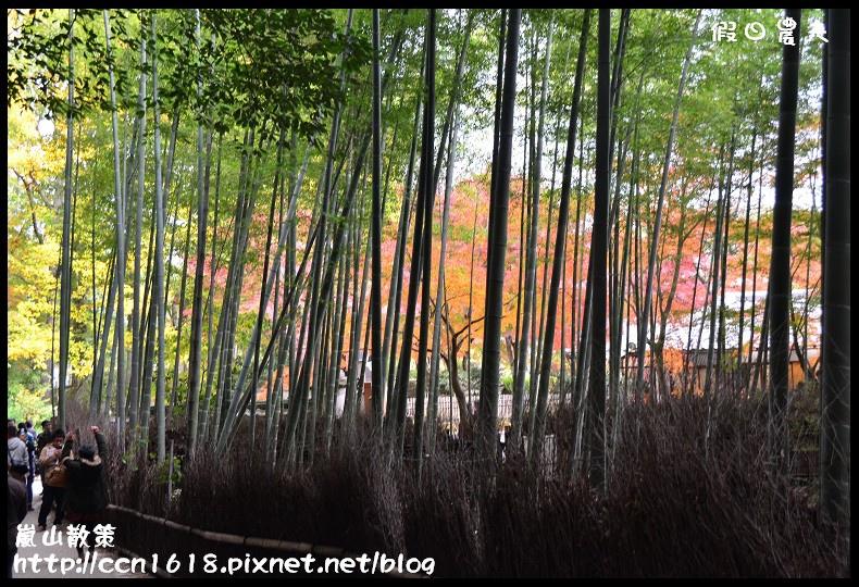 嵐山散策DSC_4511