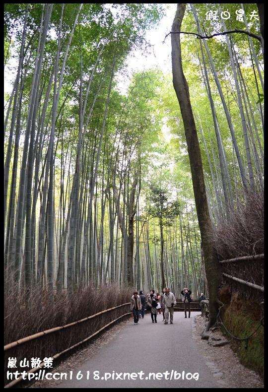 嵐山散策DSC_4508