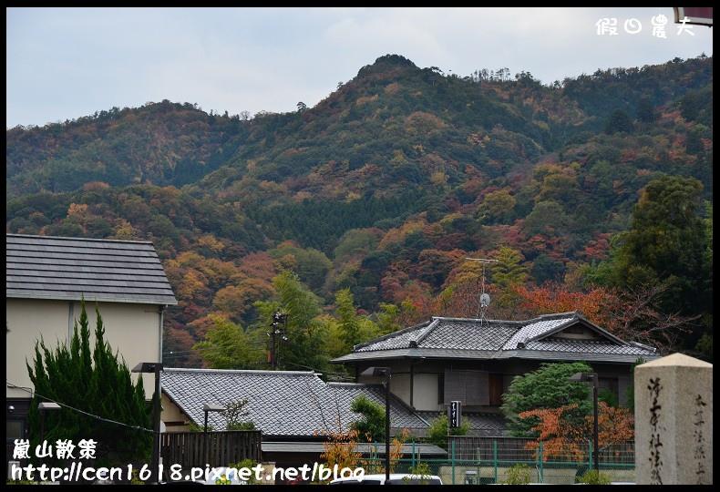嵐山散策DSC_4541