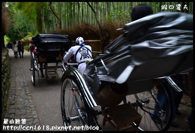 嵐山散策DSC_4555