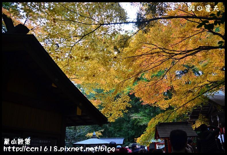 嵐山散策DSC_4564