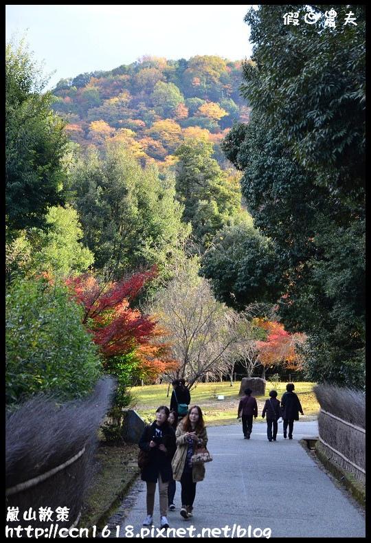 嵐山散策DSC_4598