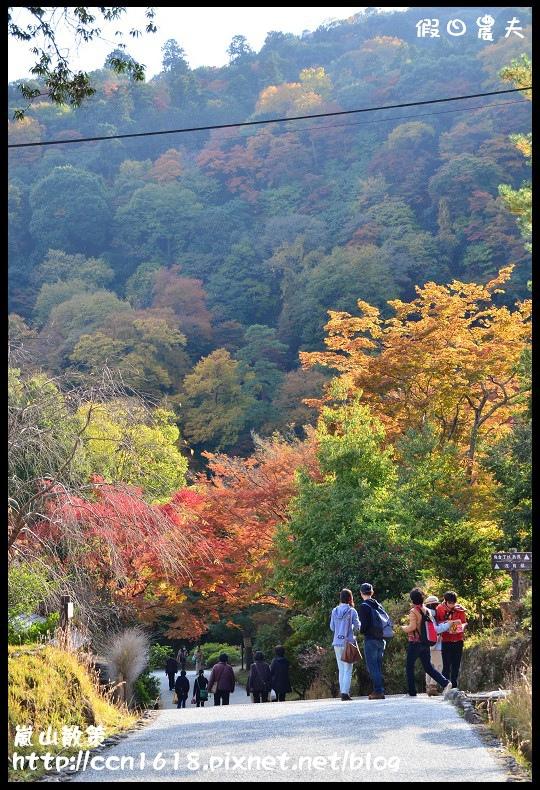 嵐山散策DSC_4600