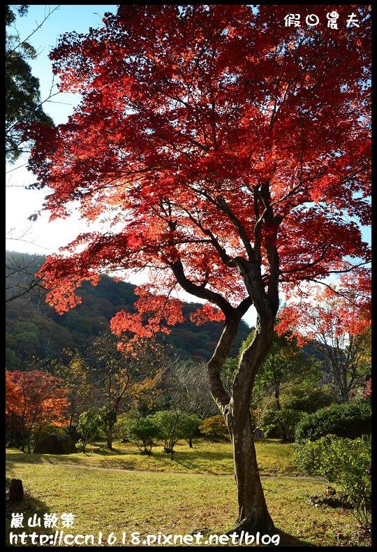 嵐山散策DSC_4616