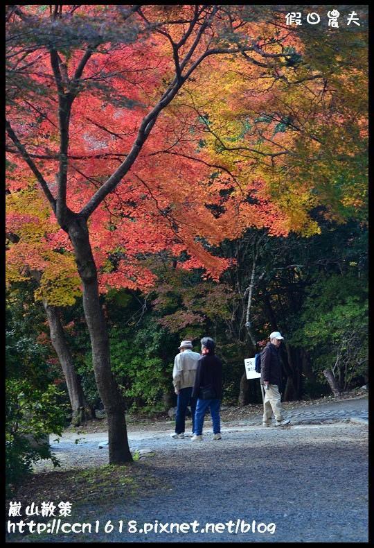 嵐山散策DSC_4651