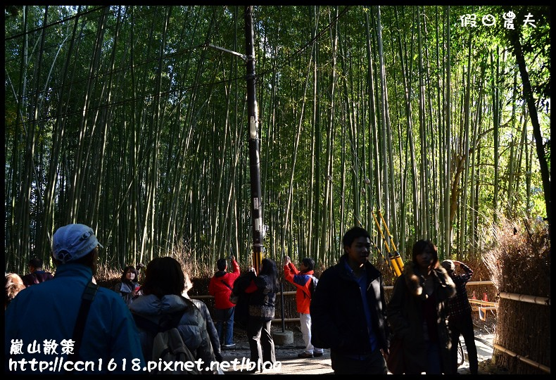 嵐山散策DSC_4686