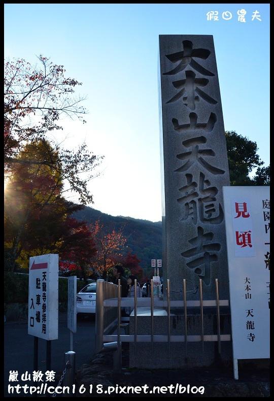 嵐山散策DSC_4701