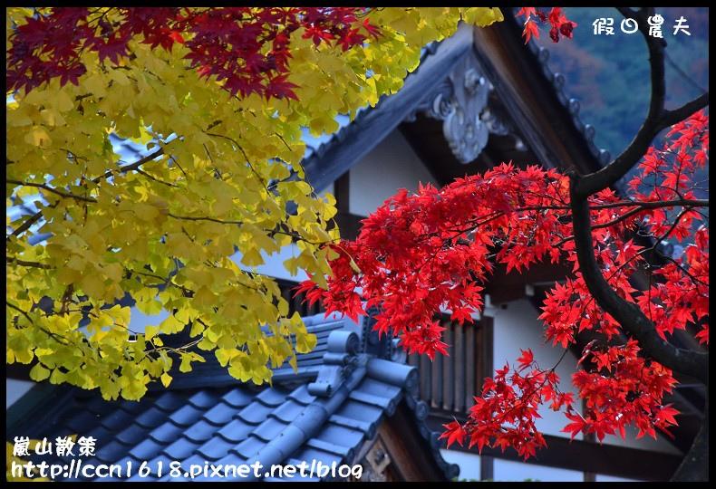 嵐山散策DSC_4702