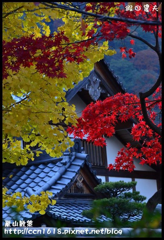 嵐山散策DSC_4705