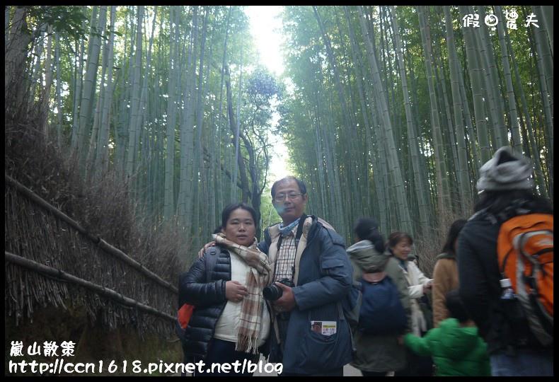 嵐山散策P1080253