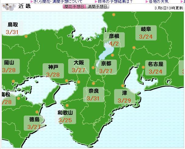 櫻花預測0306