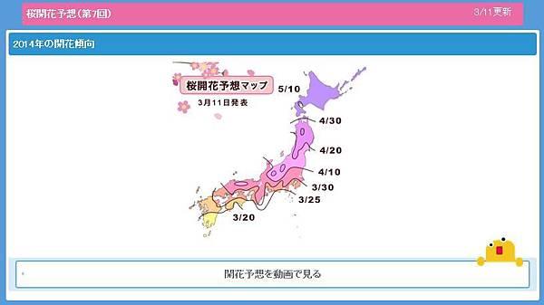 櫻花預測0311