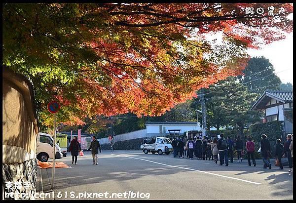 東福寺DSC_4996