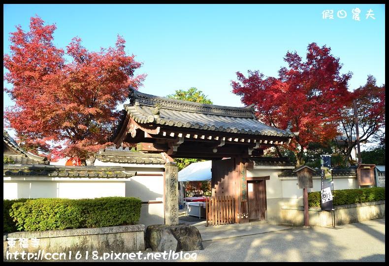 東福寺DSC_5007