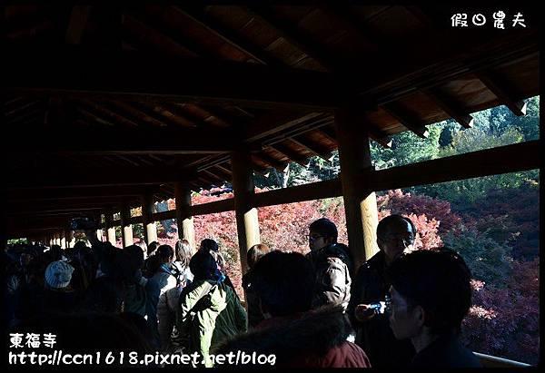 東福寺DSC_5070