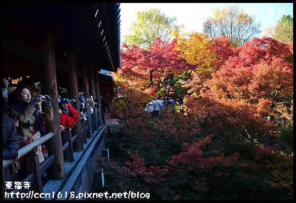東福寺DSC_5086