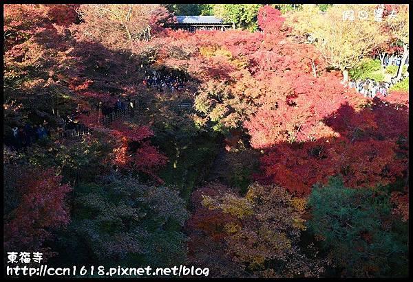 東福寺DSC_5101