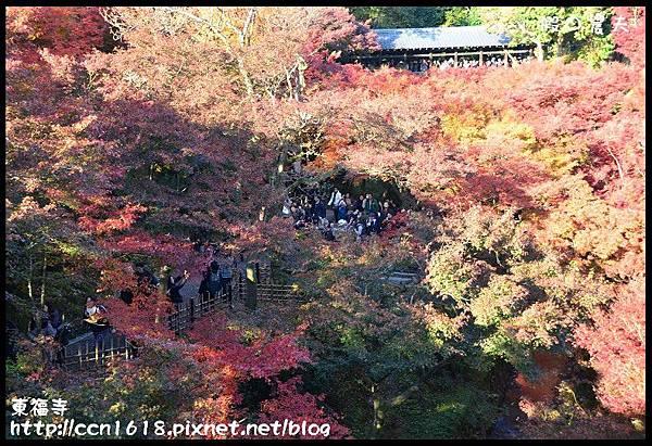 東福寺DSC_5105